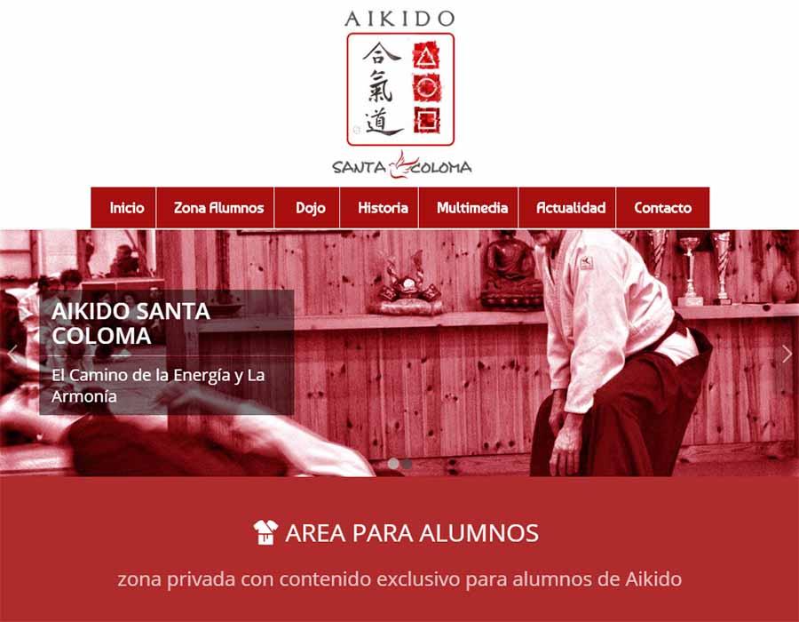 Diseño Web Akido